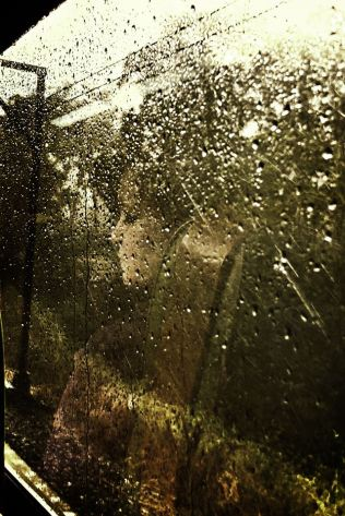 Sadness Reflected in Rain