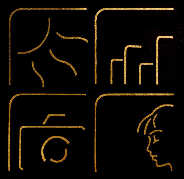 Dom Varney Photography Logo, gold foil on dark background
