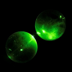 Green laser transmitted through glass spheres