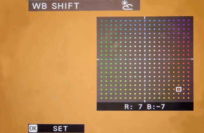 WB-Shift-2081